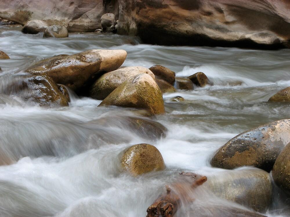 River Rocks by schmelzp