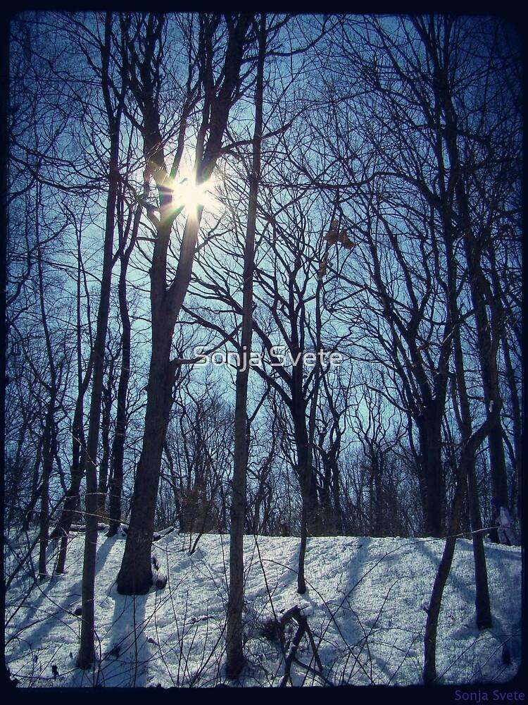 Shining White by Sonja Svete