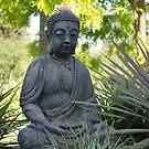 Buddha by Julie Sherlock