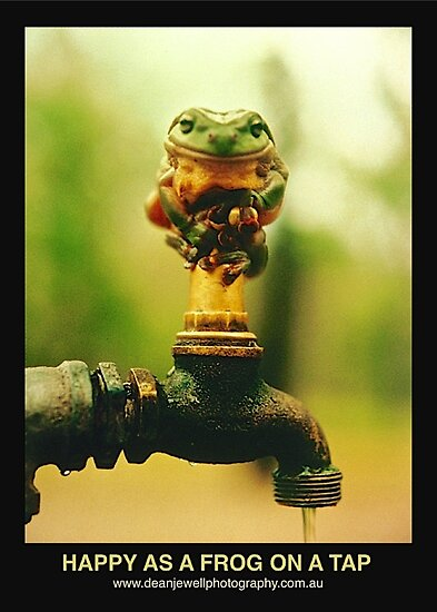 Happy As A Frog On A Tap by Dean Jewell