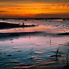 Grayland Beach Mud Flats at Sunset by Zigzagmtart