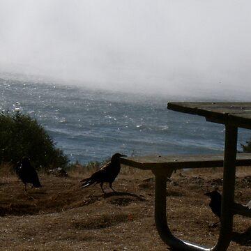 The Crows by ktbezzi