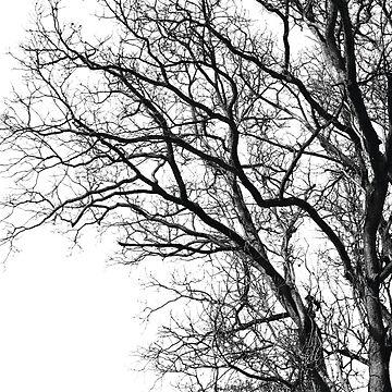 Winter Finale by nadiairianto
