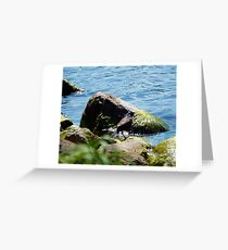 Vibrant Lakefront Greeting Card