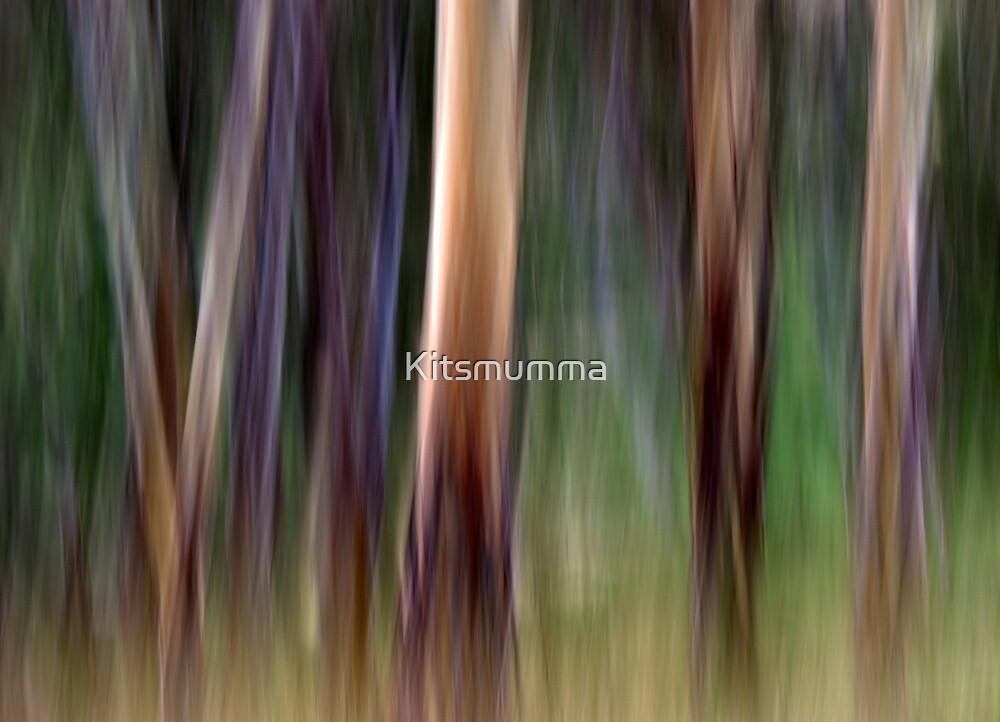 Colours of Australia by Kitsmumma