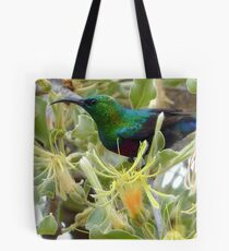 A Sweet Treat - Red-Chested Sun-bird SA Tote Bag