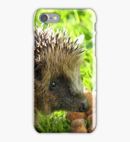 Thank You... You Saved My Life... - Hedgehog - NZ iPhone Case/Skin