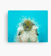 Hairy Scary Rabbit Canvas Print