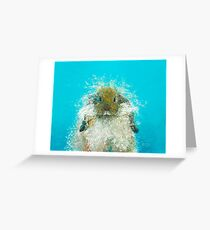 Hairy Scary Rabbit Greeting Card