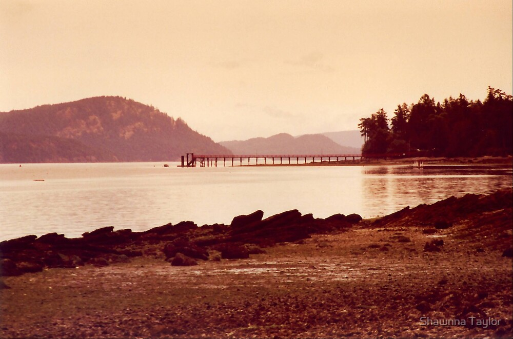 The Pier Out To The Bay - Sepia by Shawnna Taylor