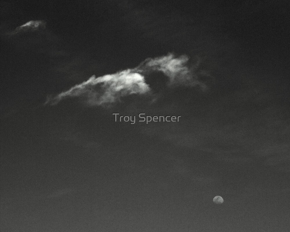 Moon over Apalach by Troy Spencer