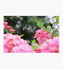 Painterly Pink Wild Roses with Green White Swirls 2 Photographic Print