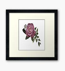Relative Roses Framed Print