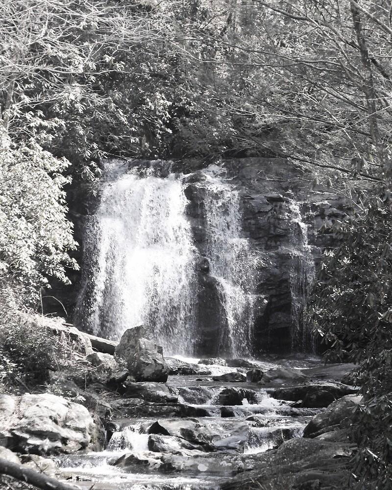 Waterfall by lisasshutterbug