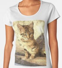 All Cats Are Black In The Dark Women's Premium T-Shirt