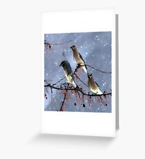 Chickadee Party in the Snow Greeting Card