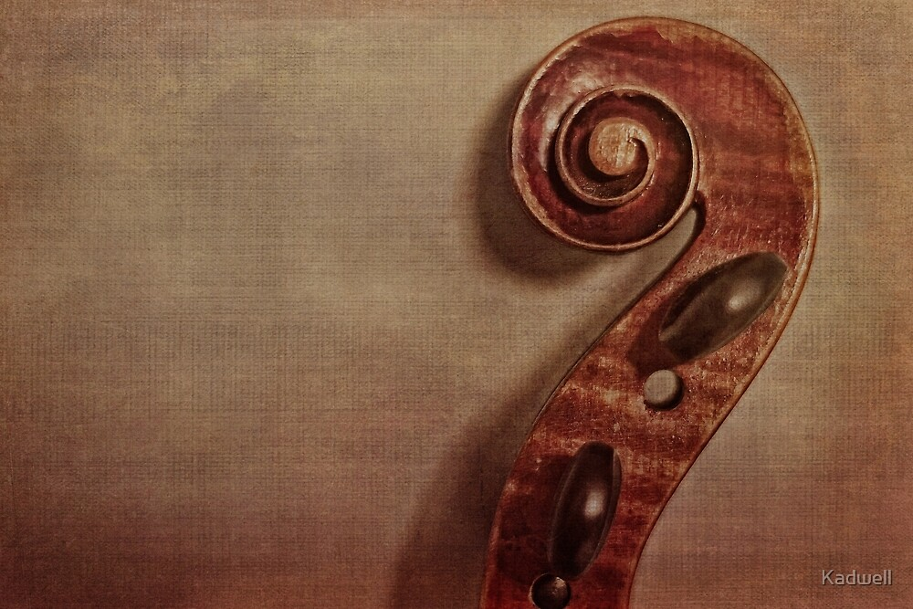 Violin Scroll by Kadwell