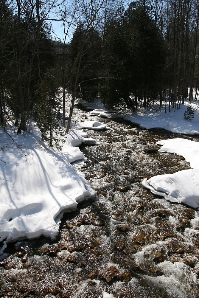 rapids Belfountain by eddyf246