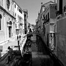 The Quiet Side of Venice by Mark Baldwyn