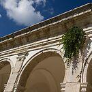 Of Arches and Plants - Certosa di San Giacomo, Capri, Italy by Georgia Mizuleva
