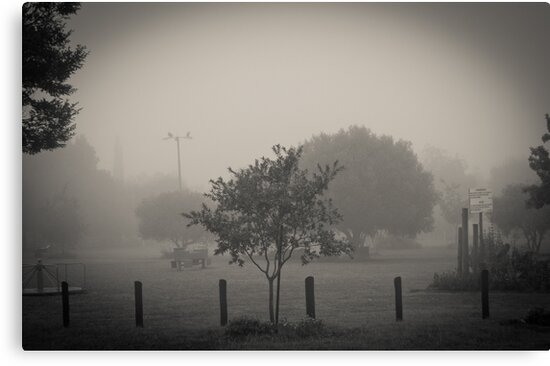 Park in the Fog by Pieter Bruwer