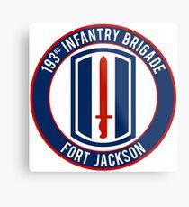 193rd Infantry Metal Print
