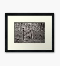 The old gate in the woods Framed Print