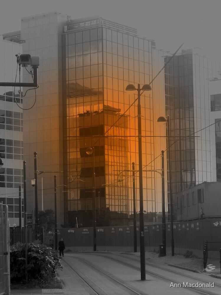 Mirrored Buildings by Ann Macdonald