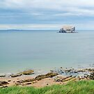 The Bass Rock from North Berwick by Jennifer J Watson