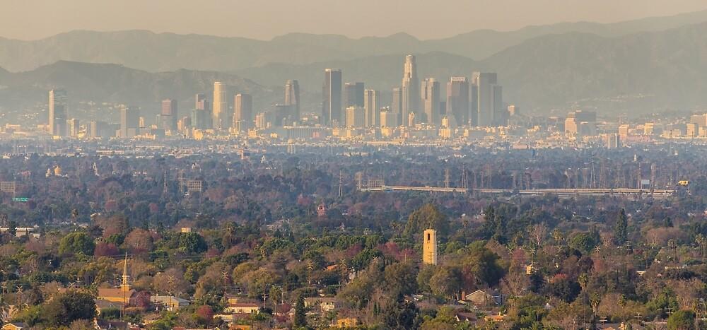 Downtown Los Angeles by Nadim Baki