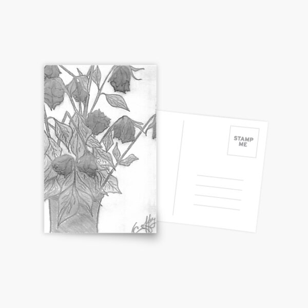 DYING ROSES Postcard