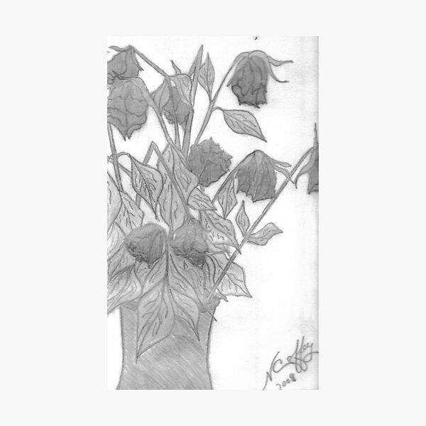 DYING ROSES Photographic Print
