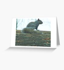 I've got Friends in High Places Greeting Card