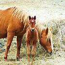 Mama and Little One by RLHall
