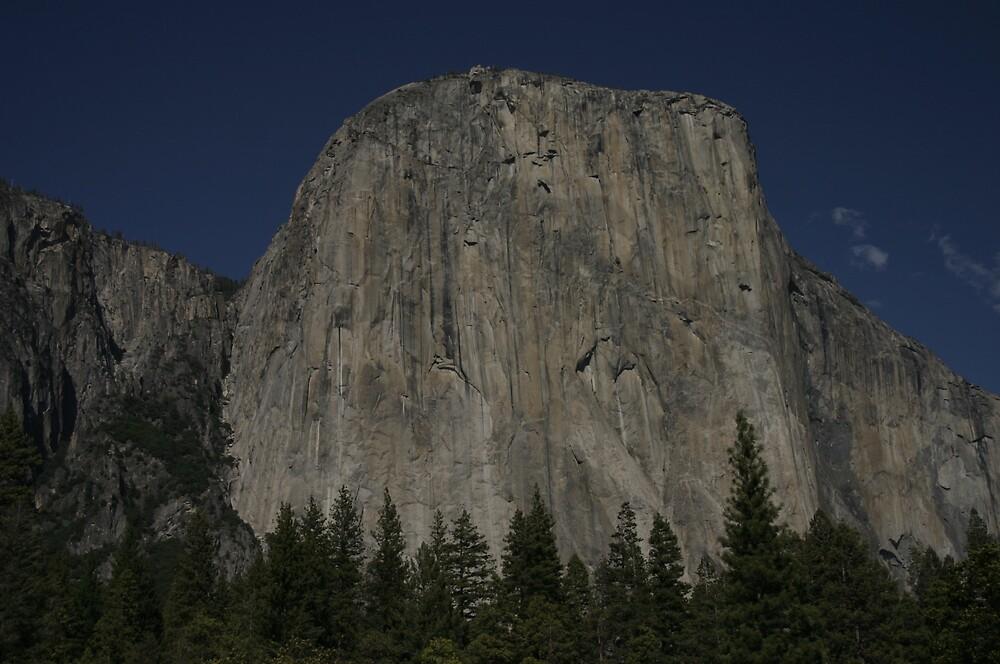 Climbing by Jessica Lynn
