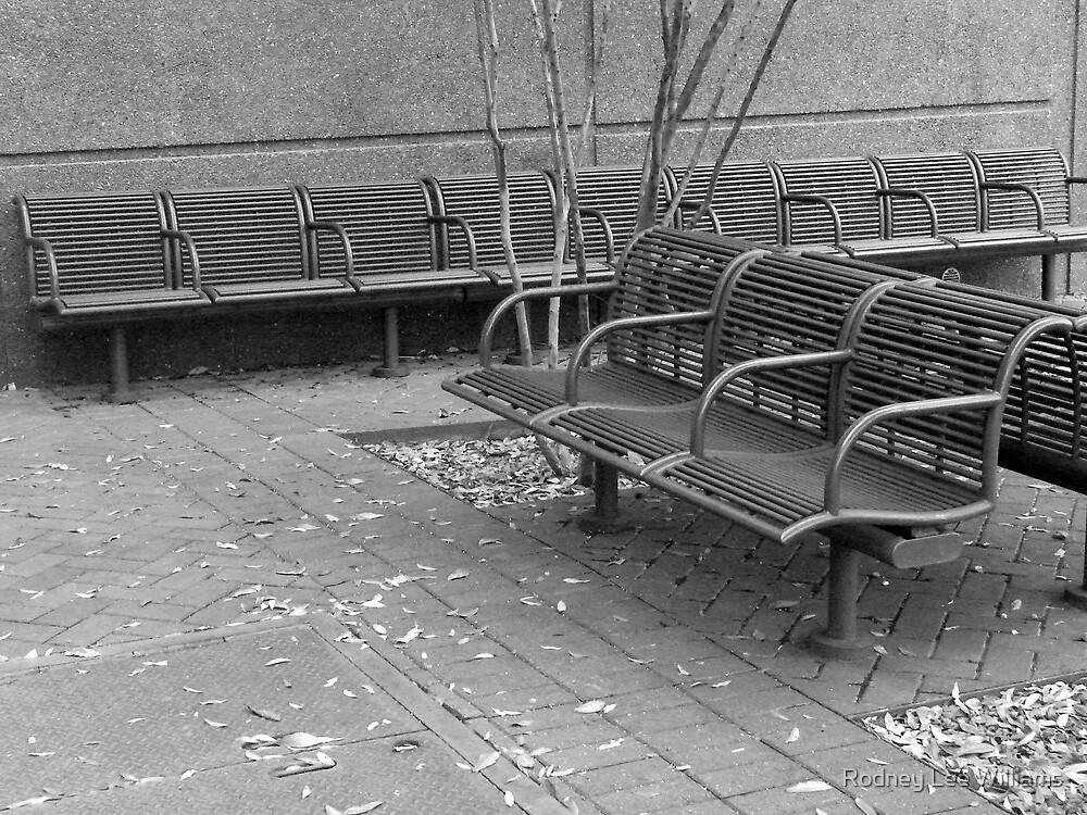 No One Sits Here by Rodney Lee Williams