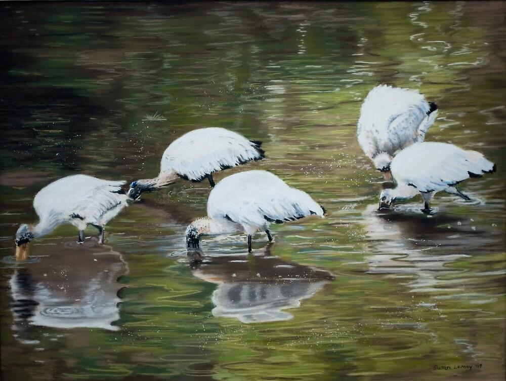 Woodstorks by Susan LeMay RN