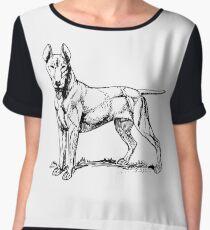Bull Terrier Chiffon Top