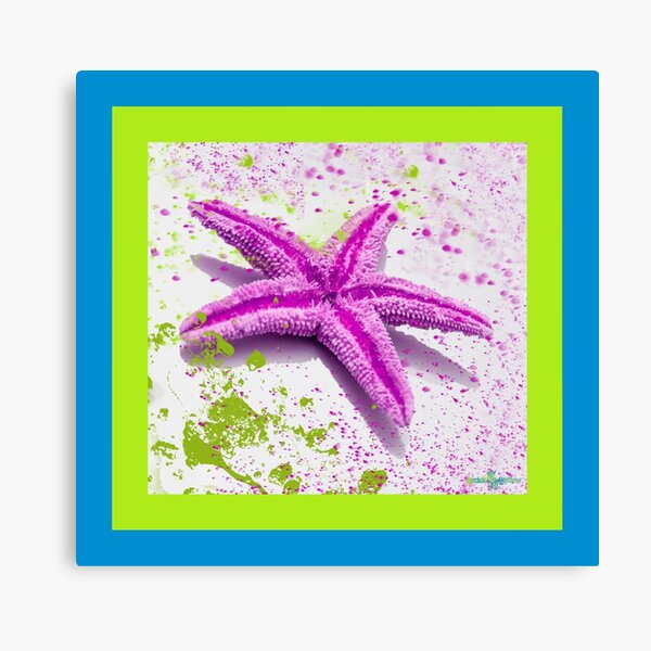 Paint Spattered Star Fish in Purple Canvas Print