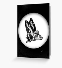 THE BUTTERFLY FISH - JAMES Greeting Card