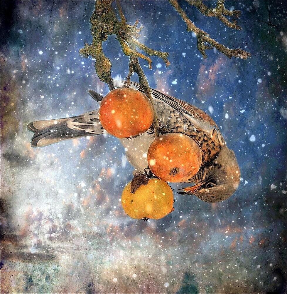 Christmas dinner by Alan Mattison