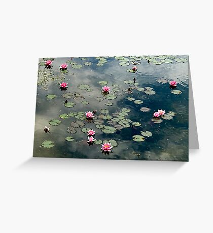 Water Lilies 1 Greeting Card
