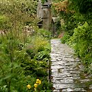Up the garden path by intheflesh