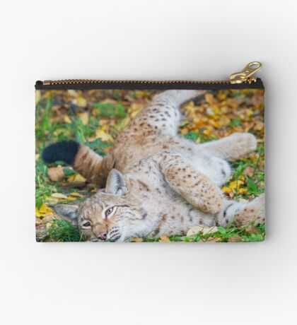 Playful Lynx Studio Pouch