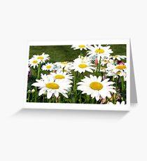 Daisies Greeting Card