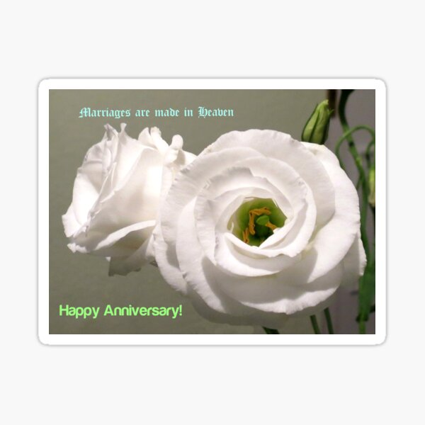 Peony Roses Wedding Anniversary Card Sticker