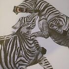Zebras Fighting by Estelle O'Brien