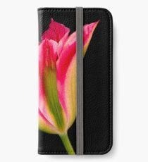Tulipa iPhone Wallet/Case/Skin