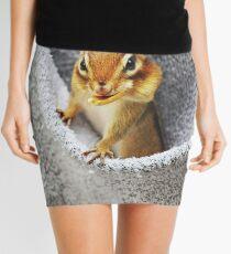 L'il Pickpocket #2 Mini Skirt