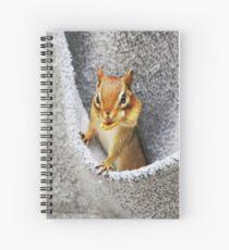 L'il Pickpocket #2 Spiral Notebook